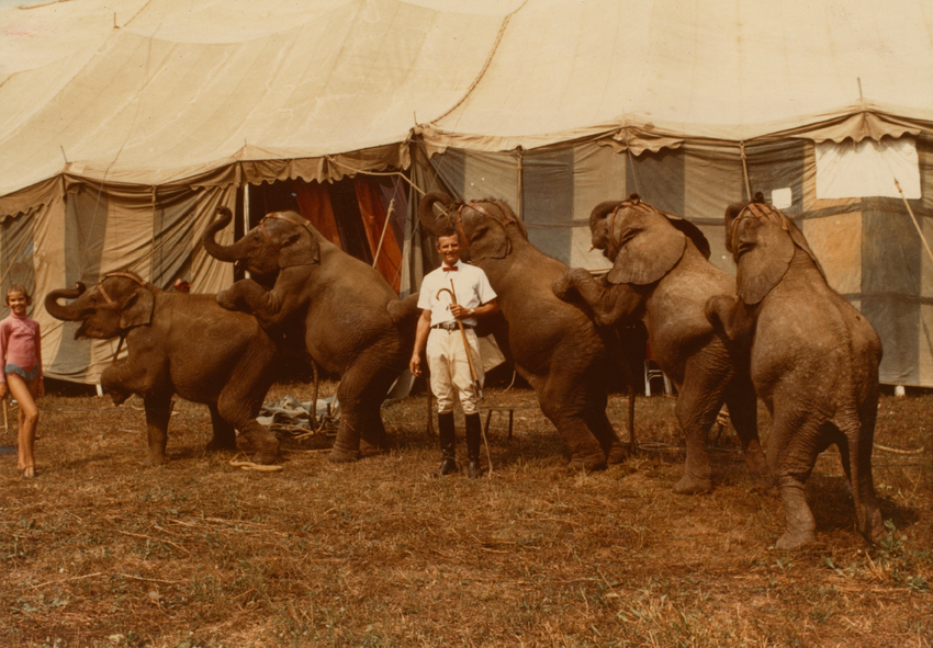 Anonymous author. Johnny and Cindy Herriott with the elephants of the Hoxie Brothers Circus, America, 1972 © Archive of Modern Conflict